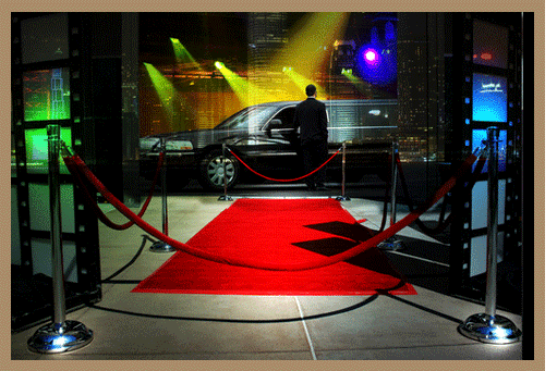 If you wish to arrive in style, our VIP Travel, Red Carpet  Service can make you feel like a star